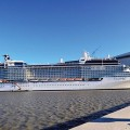celebrity eclipse botado