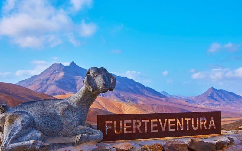 Cruceros en Fuerteventura